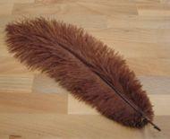 Pštrosí peří hnědé 30 - 35 cm