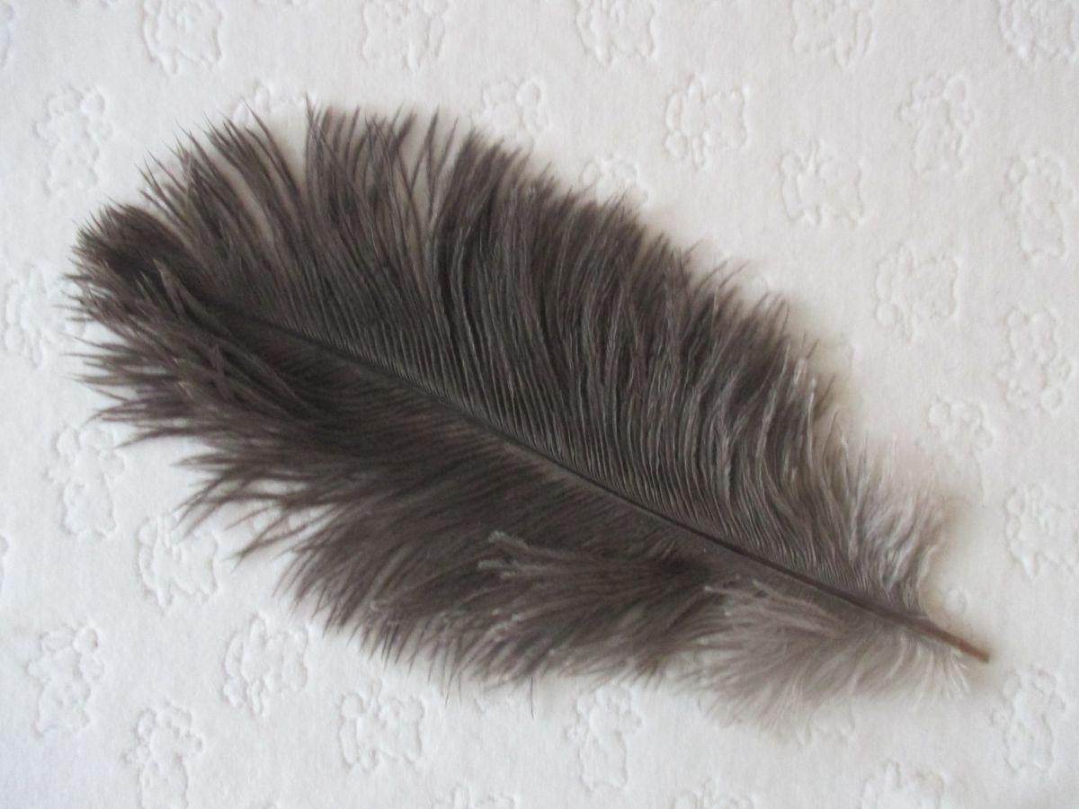 Pštrosí peří šedé 25 - 30 cm