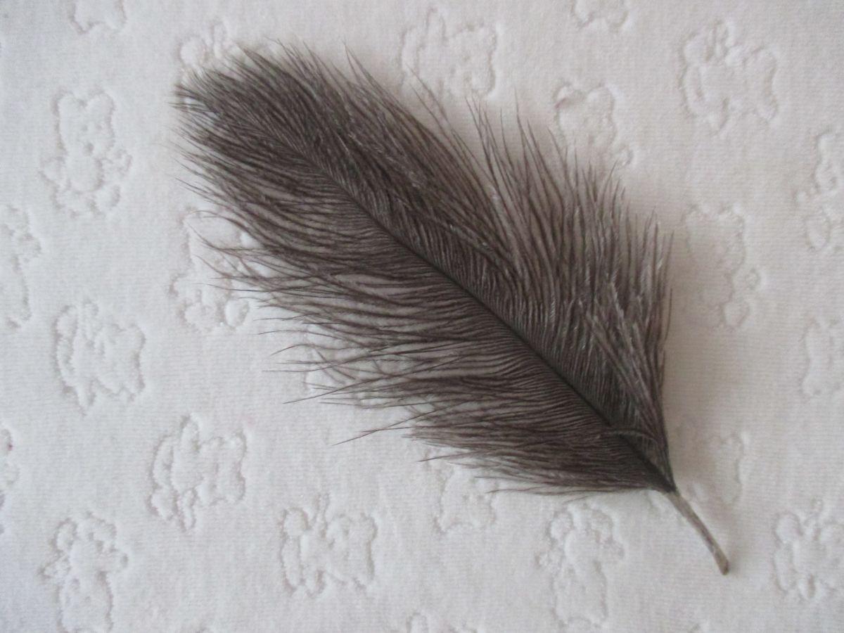 Pštrosí peří šedé 12 - 20 cm