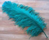 Pštrosí peří smaragdové 55 - 60 cm