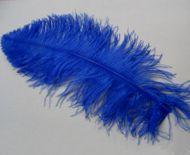 Pštrosí peří tmavě modré 55 - 60 cm
