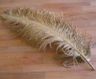Pštrosí peří zlaté 55 - 60 cm