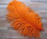 Pštrosí peří oranžové 60 - 70 cm