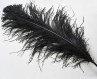 Pštrosí peří černé 70 - 75 cm