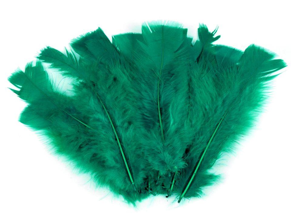 Krůtí peří zelenomodré 11-17 cm