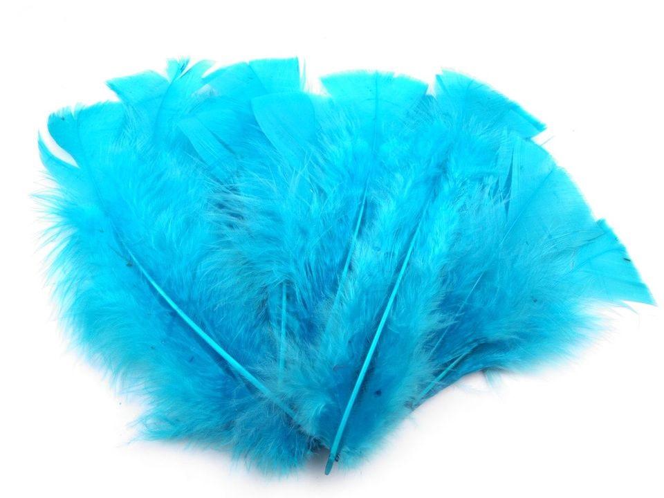 Krůtí peří světle modré 11-17 cm