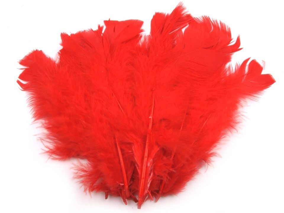 Krůtí peří červené 11-17 cm