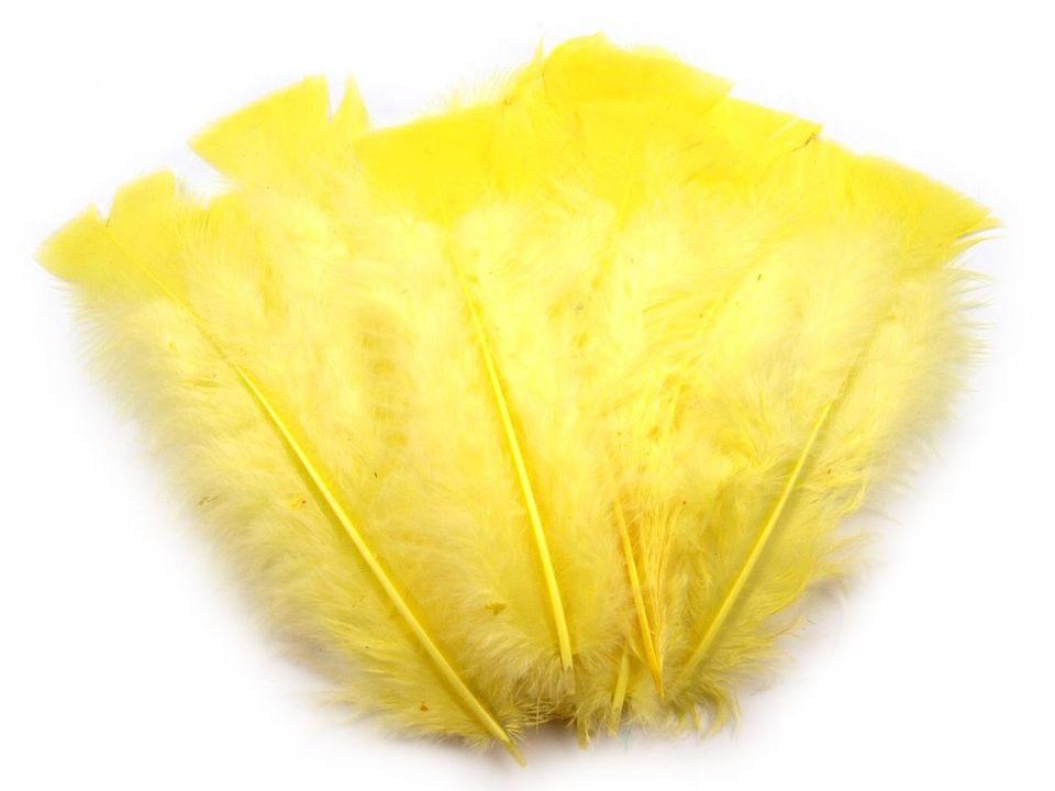 Krůtí peří žluté 11-17 cm