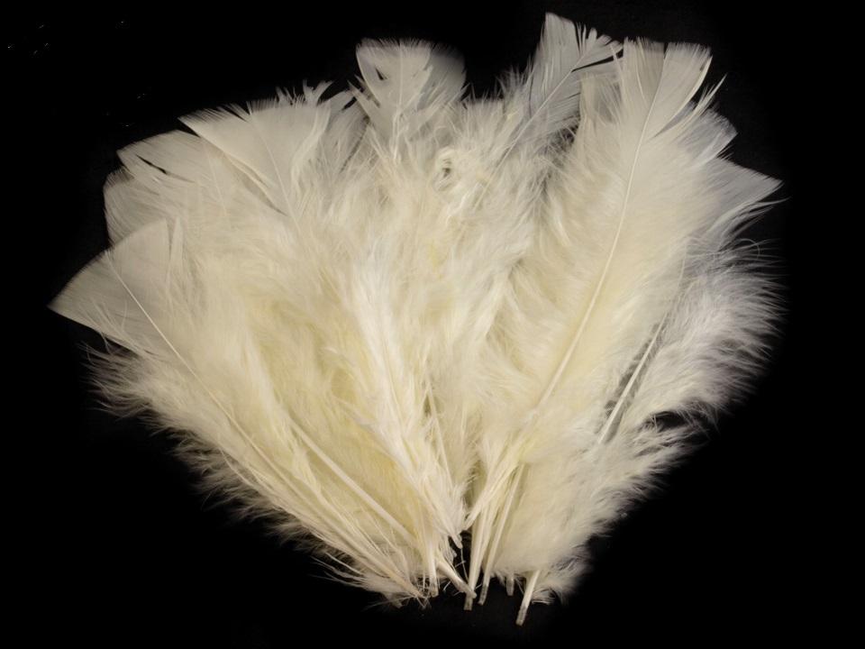 Krůtí peří béžové 11-17 cm