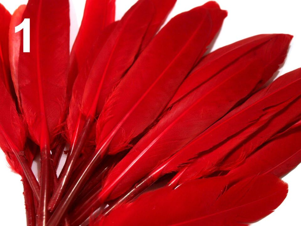 Kachní peří červené 9-14 cm