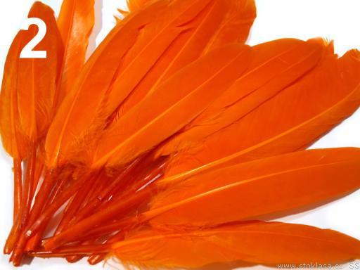 Kachní peří oranžové 9-14 cm
