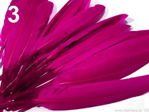 Kachní peří sytě růžové 9-14 cm