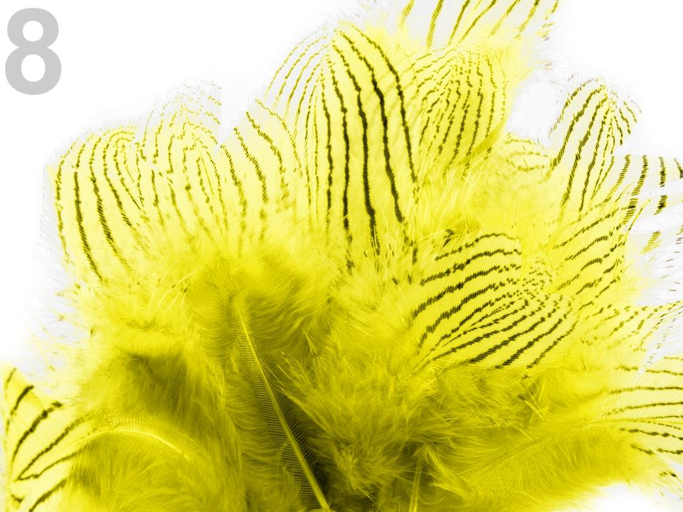 Bažantí peří žluté 4-12 cm