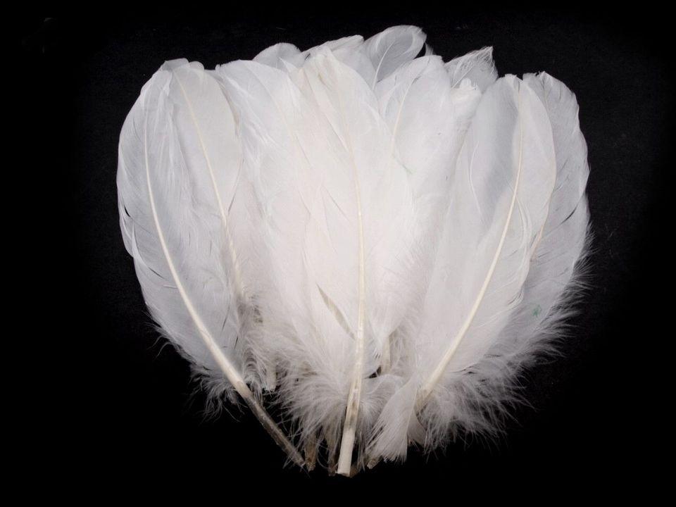 Husí peří bílé 16-21 cm