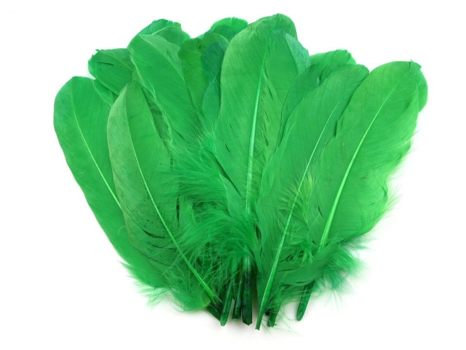 Husí peří zelené 16-21 cm