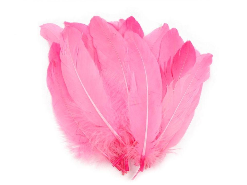 Husí peří růžové 16-21 cm