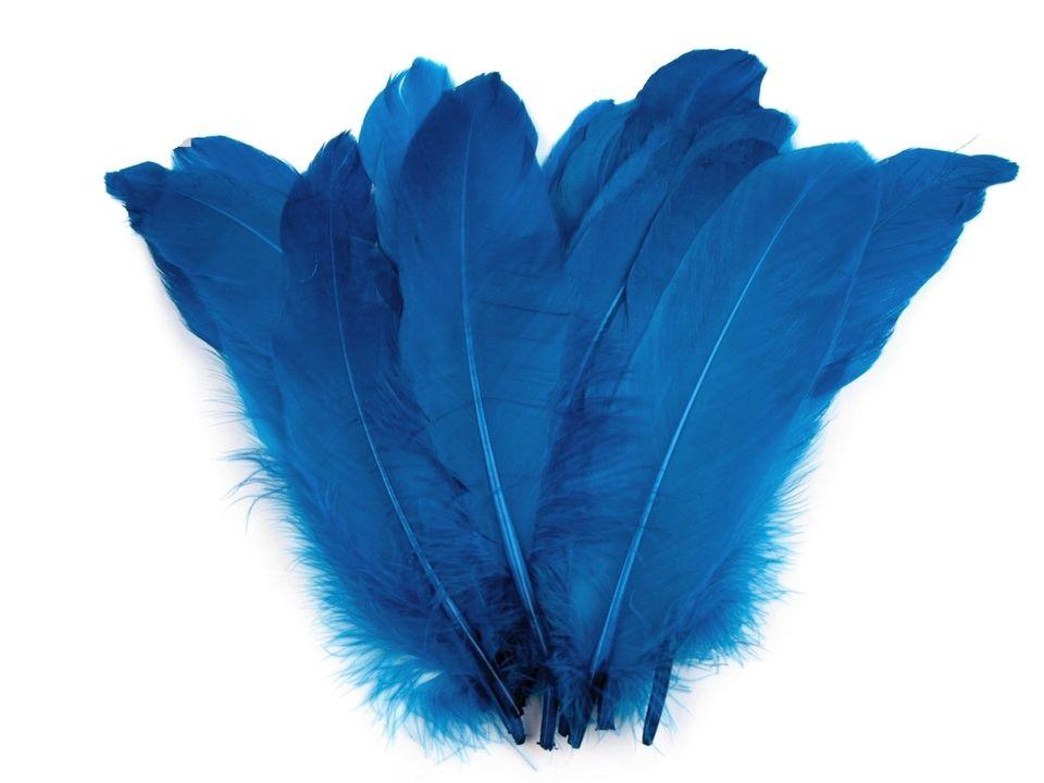Husí peří tmavě modré 16-21 cm