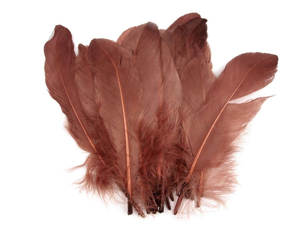 Husí peří hnědé 16-21 cm