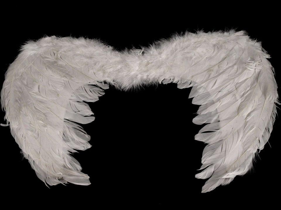 Andělská křídla 30x48 cm bílá