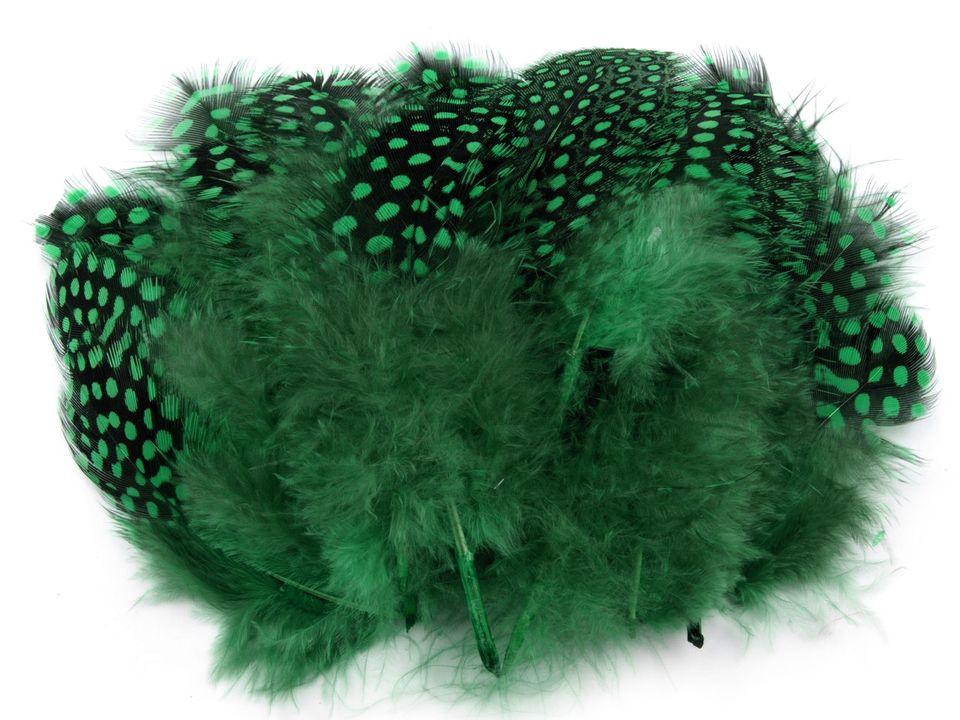 Ozdobné slepičí peří zelené 5-13 cm