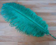 Pštrosí peří smaragdové 50 - 55 cm