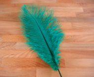 Pštrosí peří smaragdové 35 - 40 cm