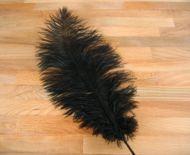 Pštrosí peří černé 35 - 40 cm