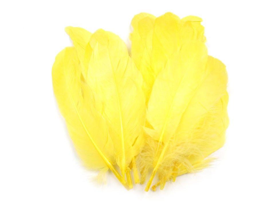 Husí peří žluté 16-21 cm