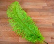 Pštrosí peří světle zelené 40 - 45 cm