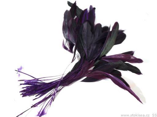 Kohoutí peří tm. fialové 13-18 cm