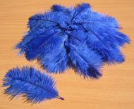 Pštrosí peří tmavě modré 5 - 12 cm