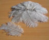 Pštrosí peří šedé 5 - 12 cm