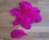 Pštrosí peří neonově růžové 5 - 12 cm
