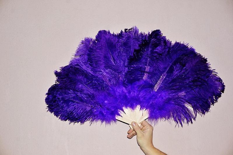 Vějíř pštrosí velký fialový