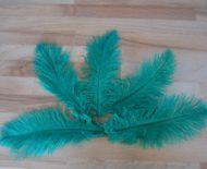 Pštrosí peří smaragdové 20 - 25 cm