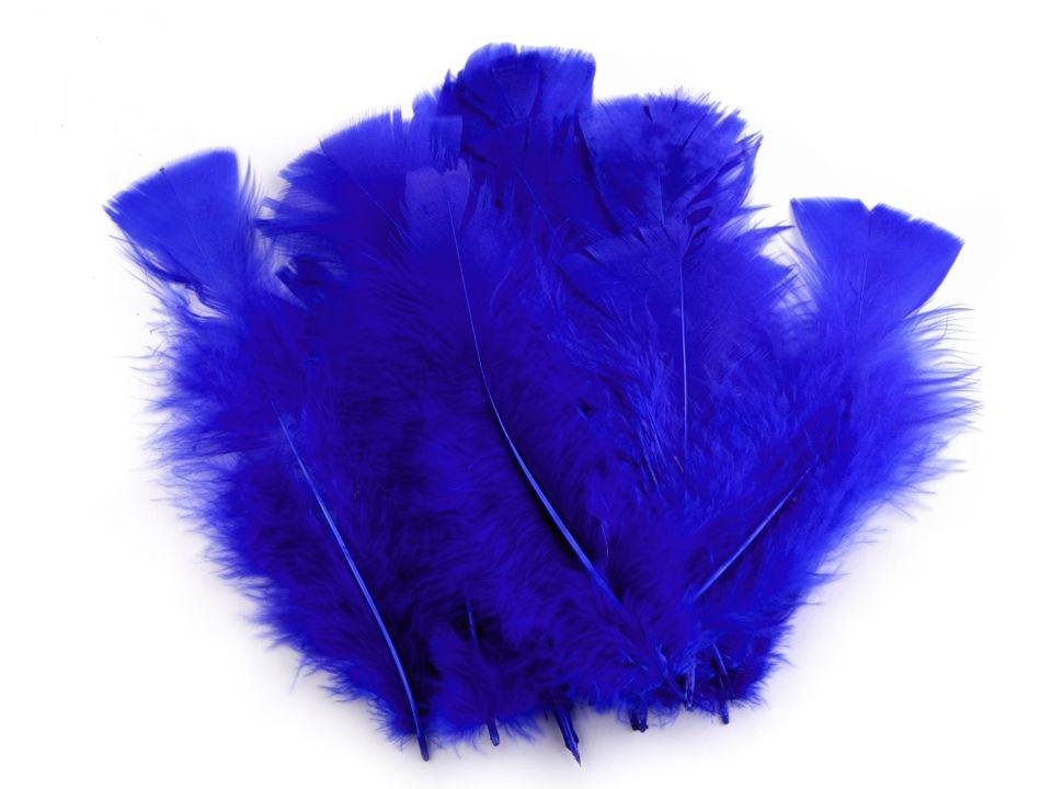 Krůtí peří tmavě modré 11 - 17 cm