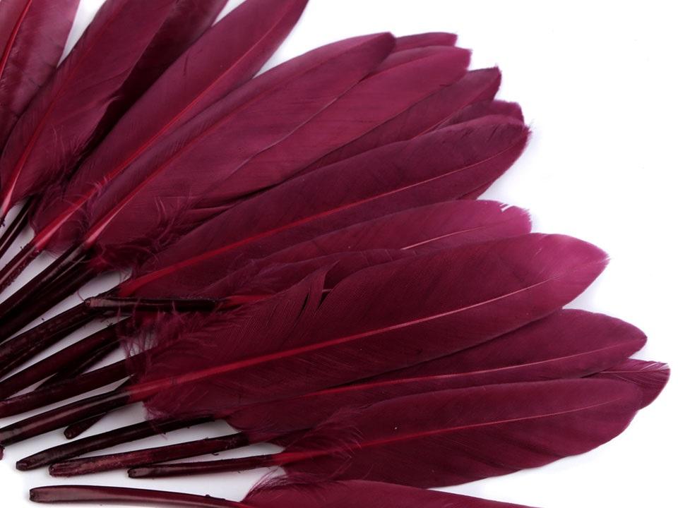 Kachní peří vínové 9 - 14 cm