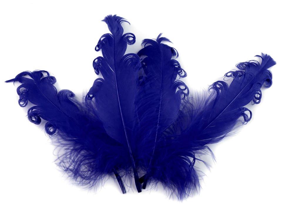Husí peří kudrnaté tmavě modré 13 - 18 cm