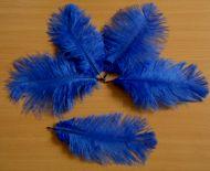 Pštrosí peří tmavě modré 12 - 20 cm