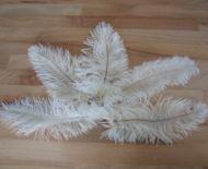 Pštrosí peří bílé 12 - 20 cm