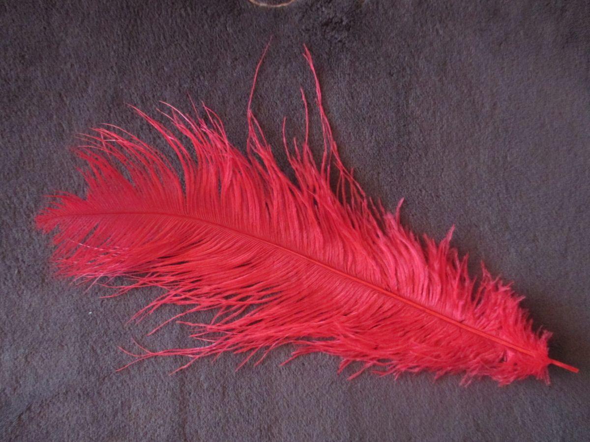 Pštrosí peří červené 50 - 55 cm