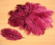 Pštrosí peří kaštanově hnédé 5 - 12 cm