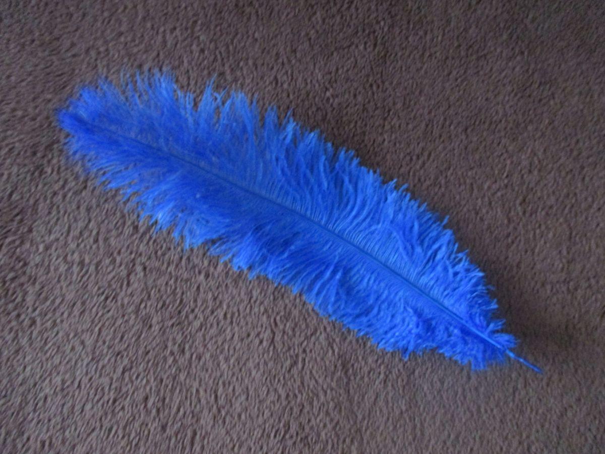 Pštrosí peří tmavě modré 30 - 35 cm