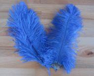 Pštrosí peří modré 25 - 30 cm