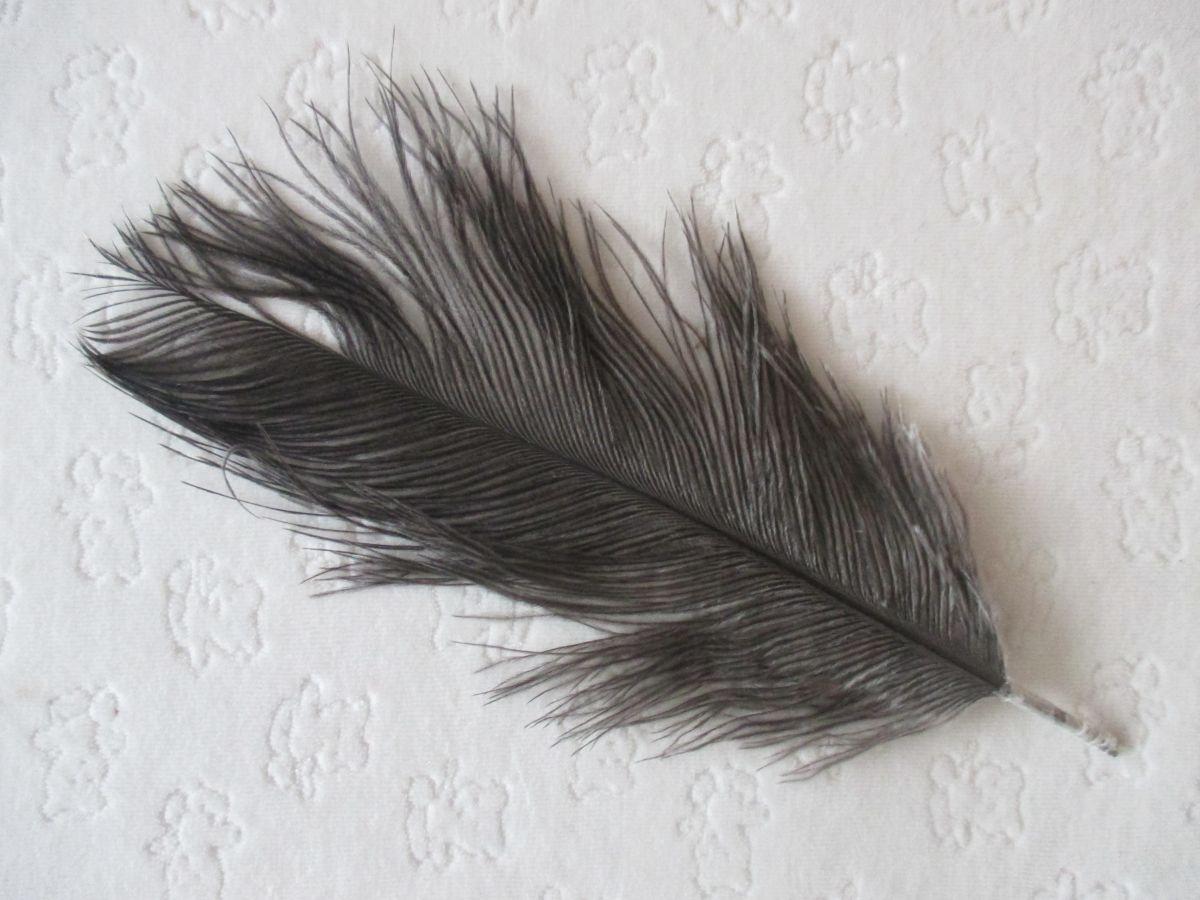 Pštrosí peří šedé 20 - 25 cm