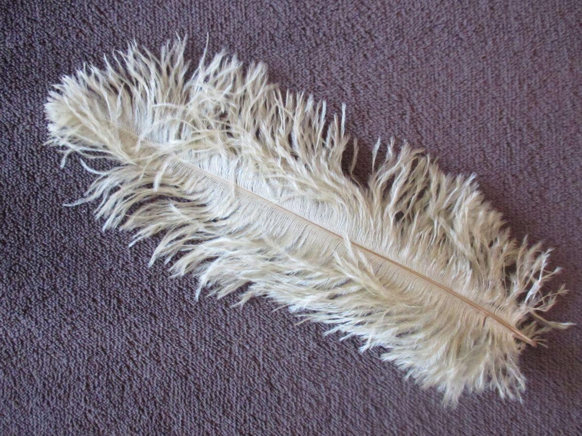 Pštrosí peří zlaté 30 - 35 cm