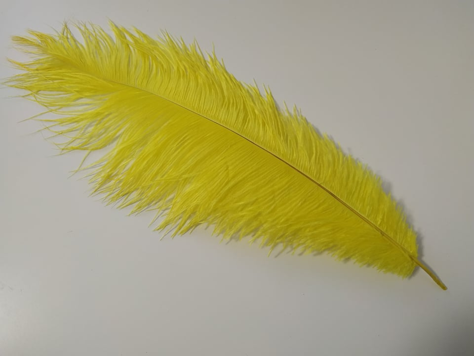 Pštrosí peří žluté 45 - 50 cm