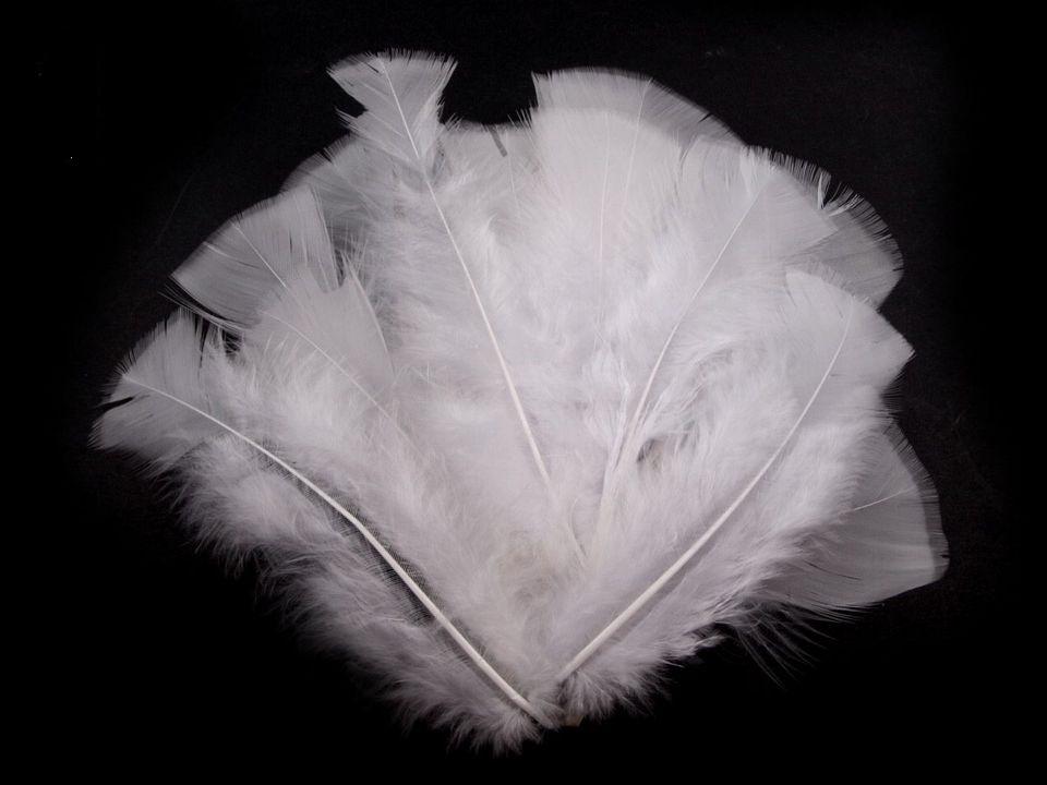 Krůtí peří bílé 11-17 cm