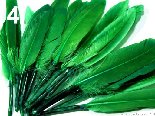 Kachní peří zelené 9-14 cm