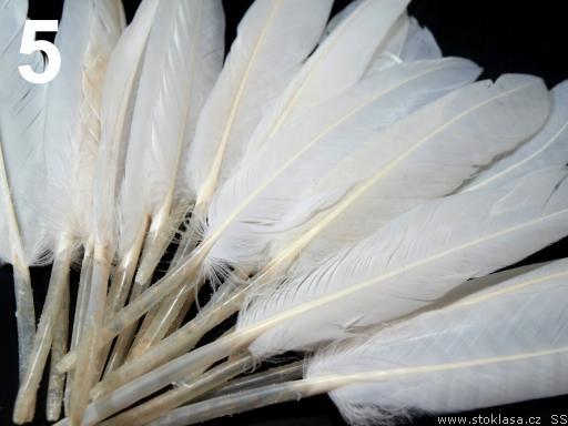 Kachní peří bílé 9-14 cm